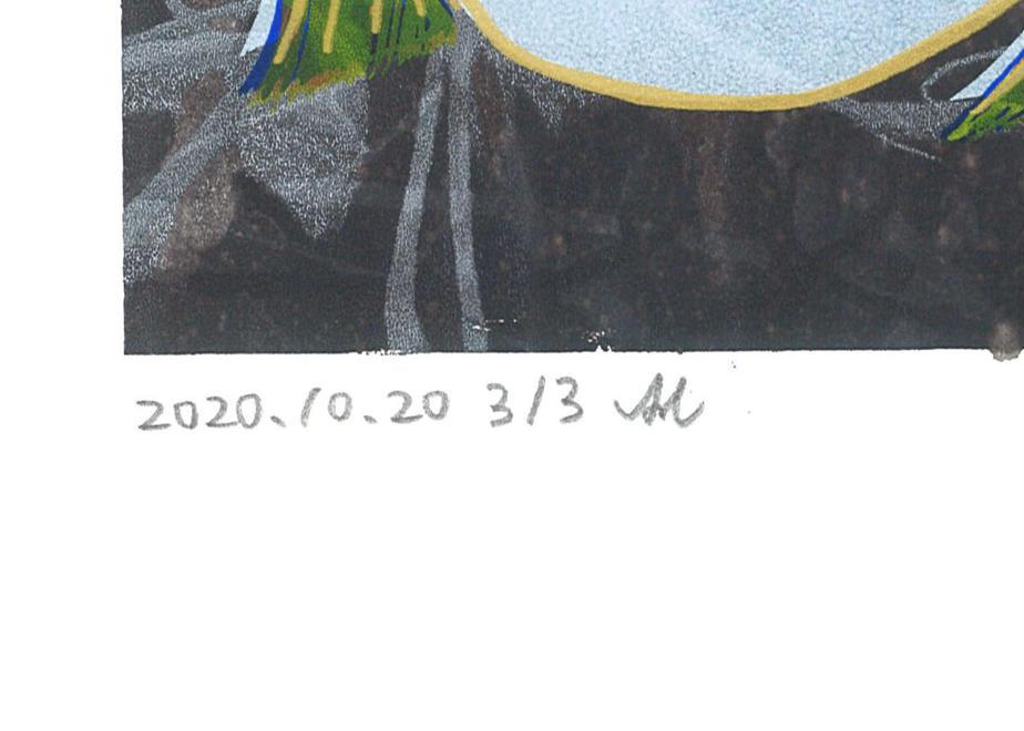 5ff9934e8a457219ae6a393f