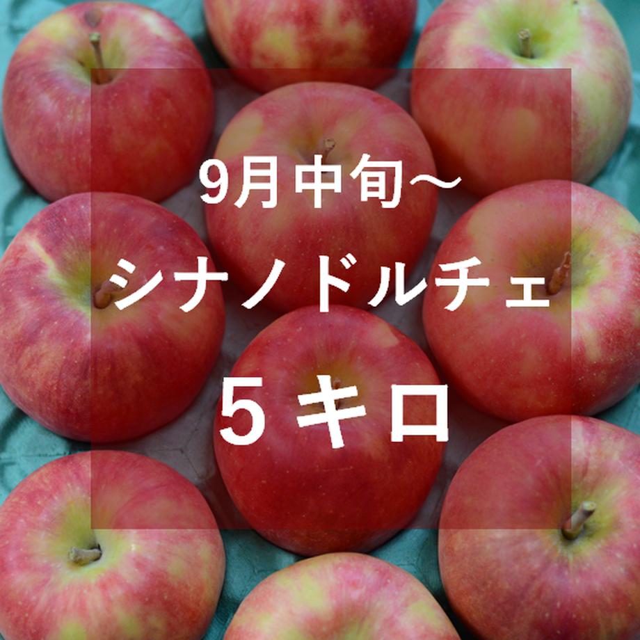 5f5a04e600f4d01c69d1c279