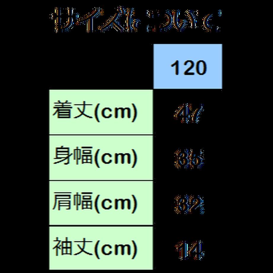 5dec6146f65aec12238d7a93