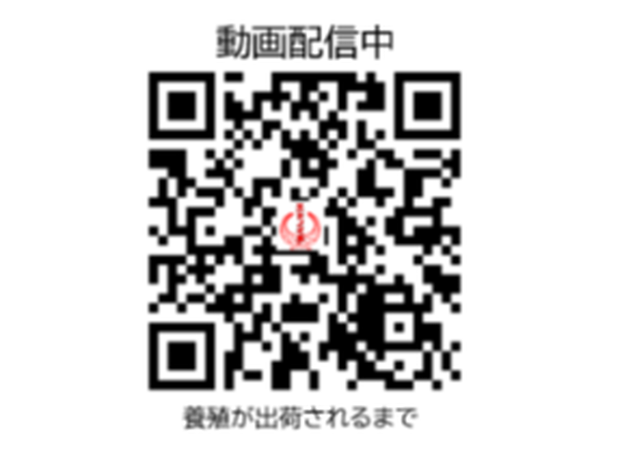 5fc4d7dddf51593572e0e768
