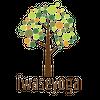 iwaseyoga