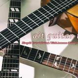 ait guitar trio stores shop