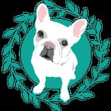 BullPulu Online Store