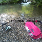 CARDINAL LOGIC