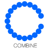 COMBINE/BAMI gallery