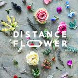DISTANCE FLOWER