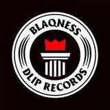 DLiP RECORDS OFFICIAL WEB SHOP