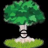 Ethnic Tea Salon