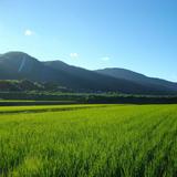 京都丹波の里はらだ自然農園store