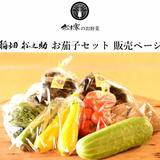 稲畑松之助  お茄子セット販売ページ