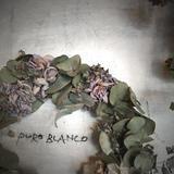PURO BLANCO online shop