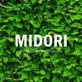 MIDORI mirthful dozenth ripple by Shirai Yusuke