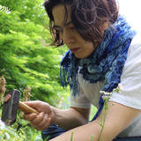 Kitayama Custom Triangle / 北山トライアングル