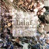 Lilaf by m.soeur