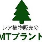 植物販売のMTプラント