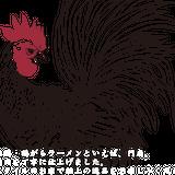 京都・鶏がらラーメン「門扇」