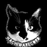 HACHIWARECORD