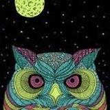 Nightowl Fabrics