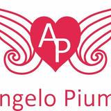 Angelo Piuma Online Store
