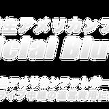 関西学生アメリカンフットボールリーグ rtv オフィシャル DVD・Blu-ray  ストア