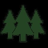 樹木素材.com-フリー素材-CutOutTrees-桜-鳥瞰