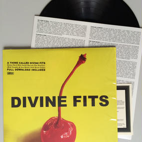 A THING CALLED DIVINE FITES by Divine Fits LP