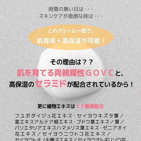20%OFF※送料無料【定期】ザ ベーシック クリーム