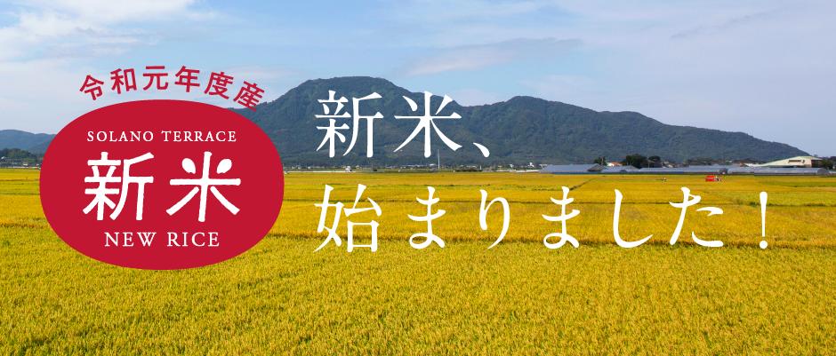 早稲品種のお米、販売開始!
