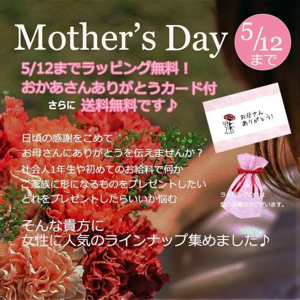 母の日までのお得な企画♪