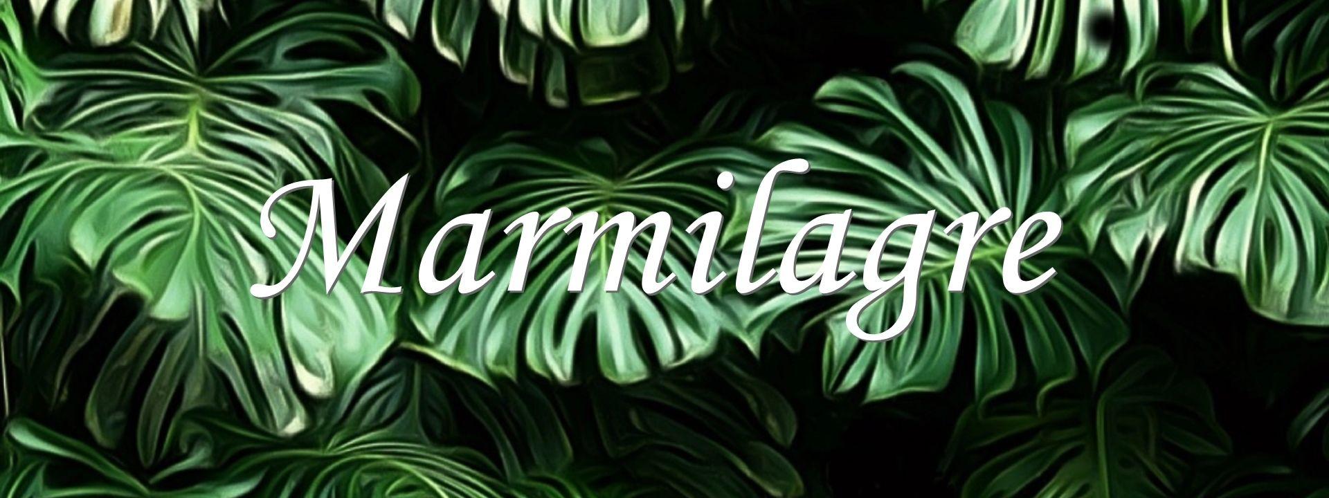 Marmilagre