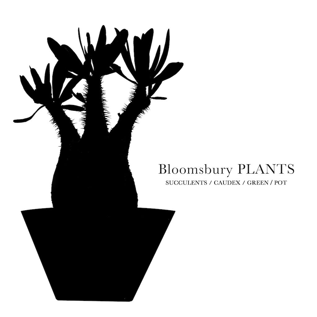 Bloomsbury PLANTS