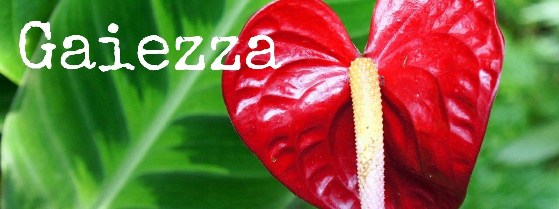 Gaiezza