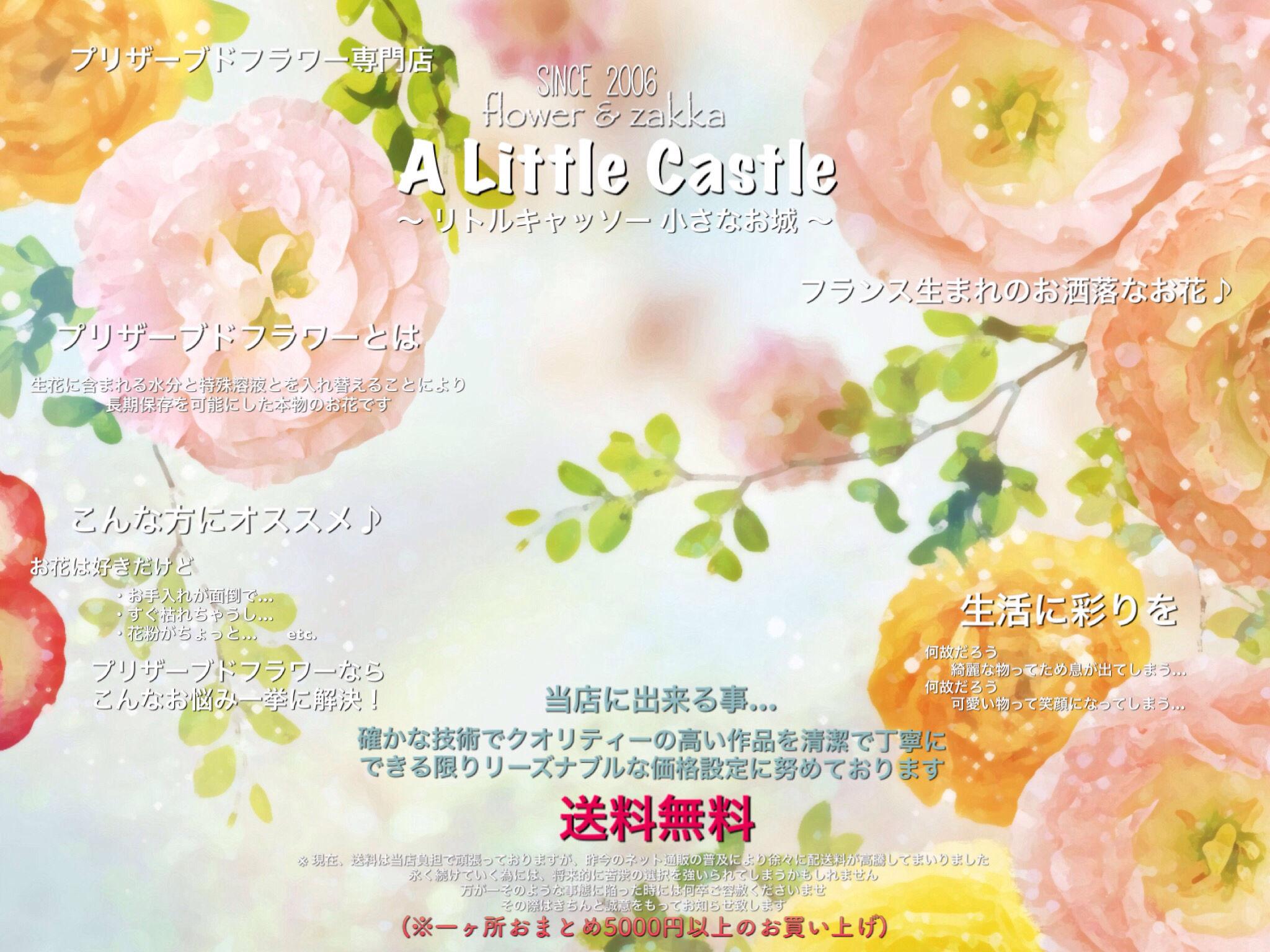 A Little Castle 〜リトルキャッソー小さなお城〜
