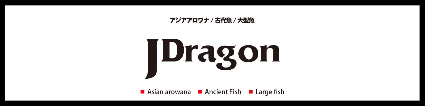 J-Dragon