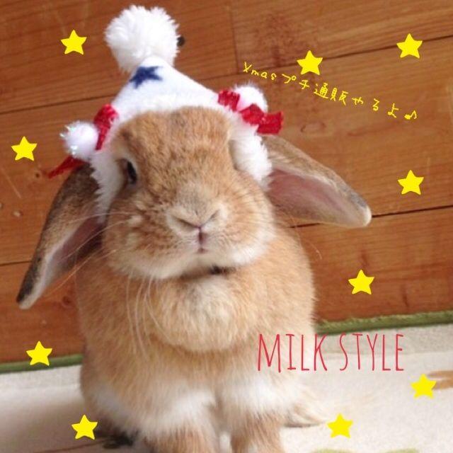 milkstyle