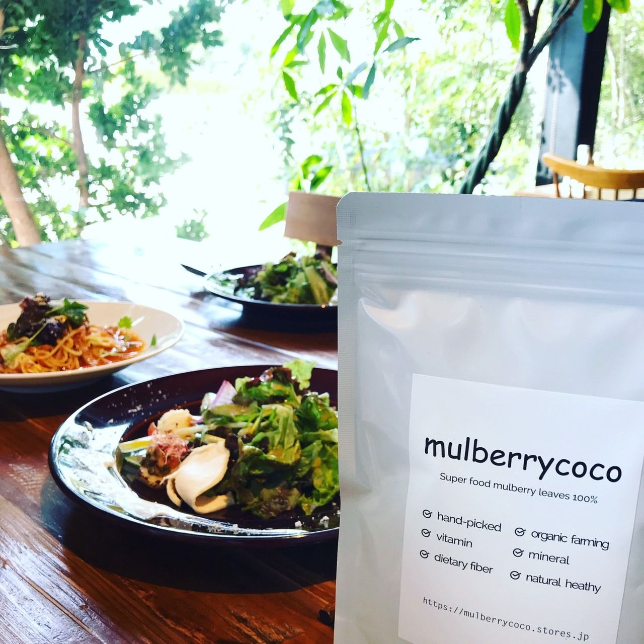 mulberry cocoの力