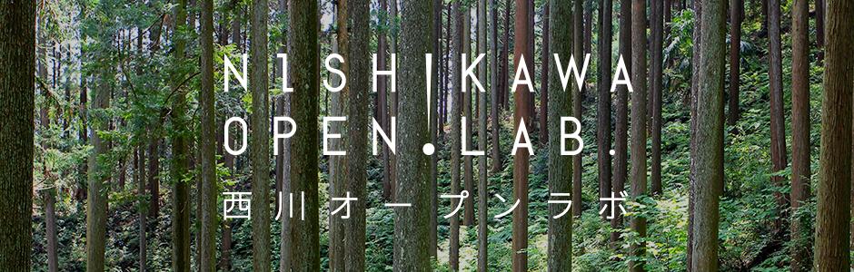 NISHIKAWA OPEN LAB.
