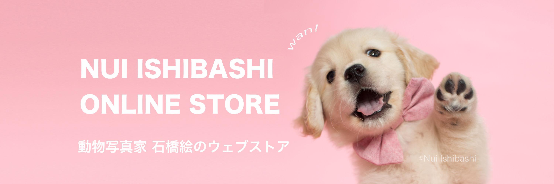 nuiishibashi