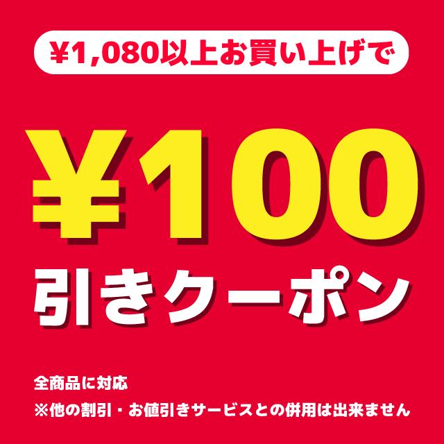今月のクーポン100円OFF