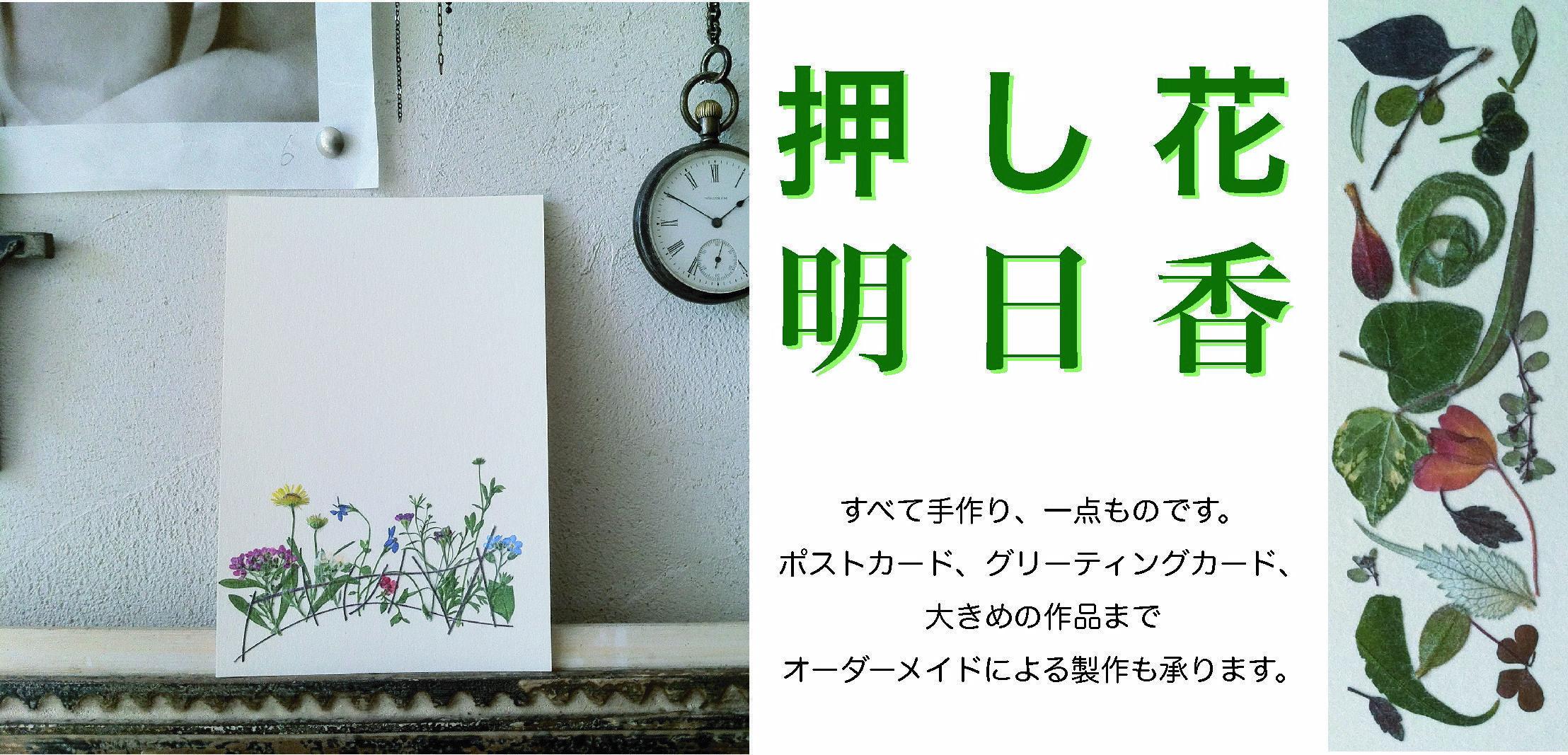 押し花明日香/布施陽子(押し花作品製作販売)