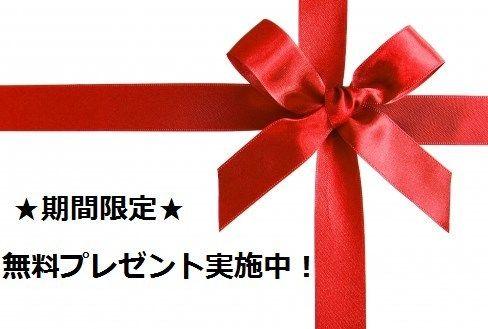 期間限定★無料プレゼント実施中