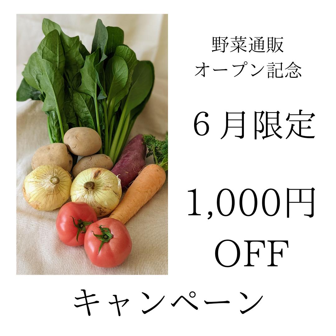 野菜通販オープンキャンペーン