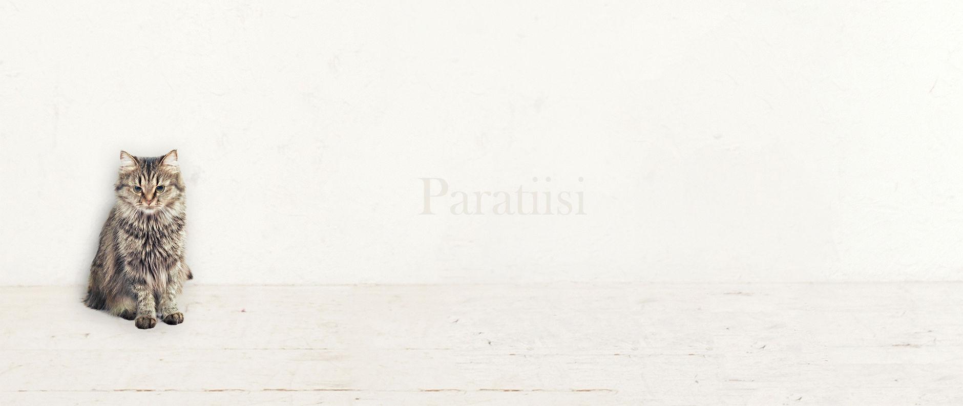 Paratiisi