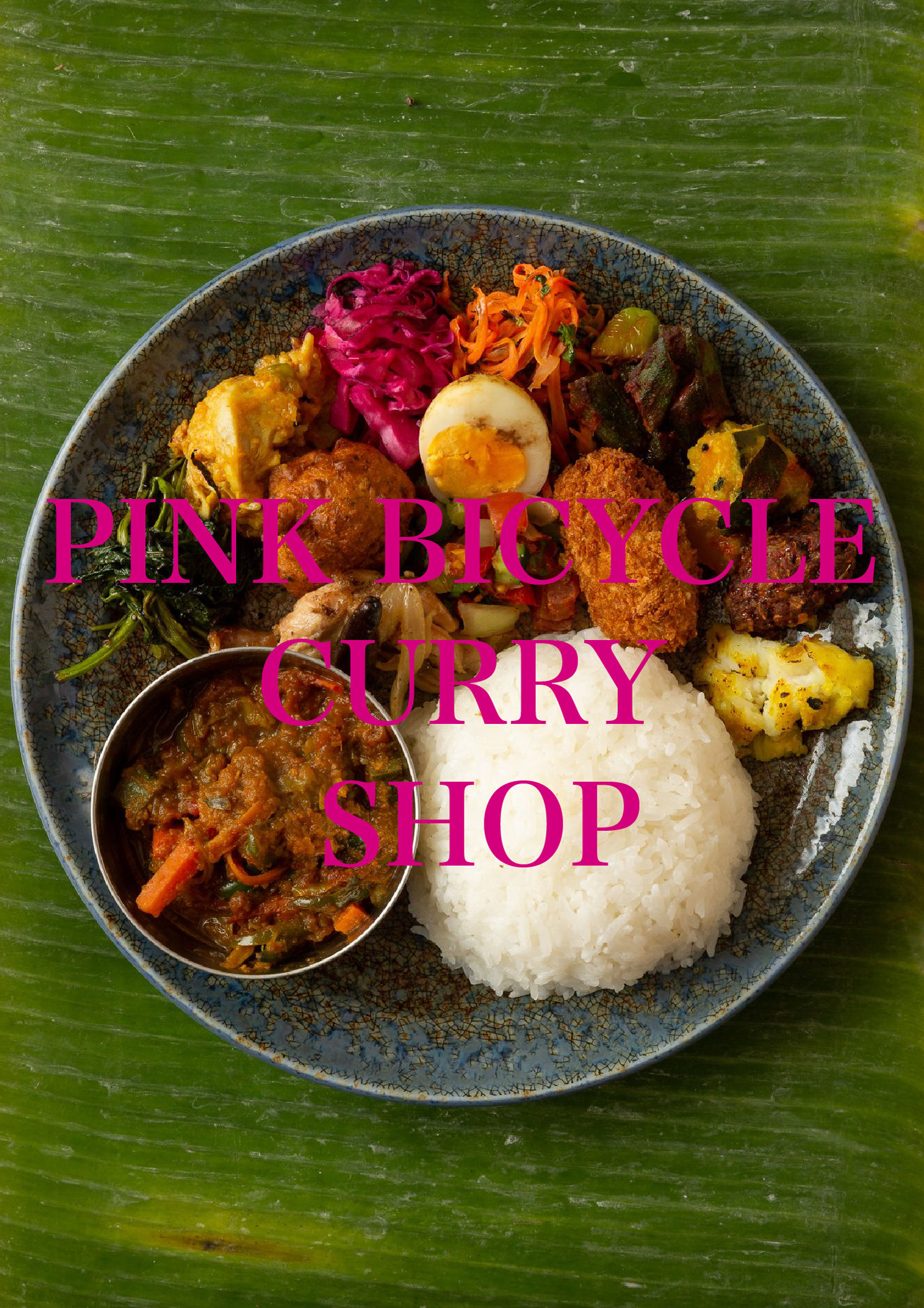 PINK BICYCLE CURRY SHOP