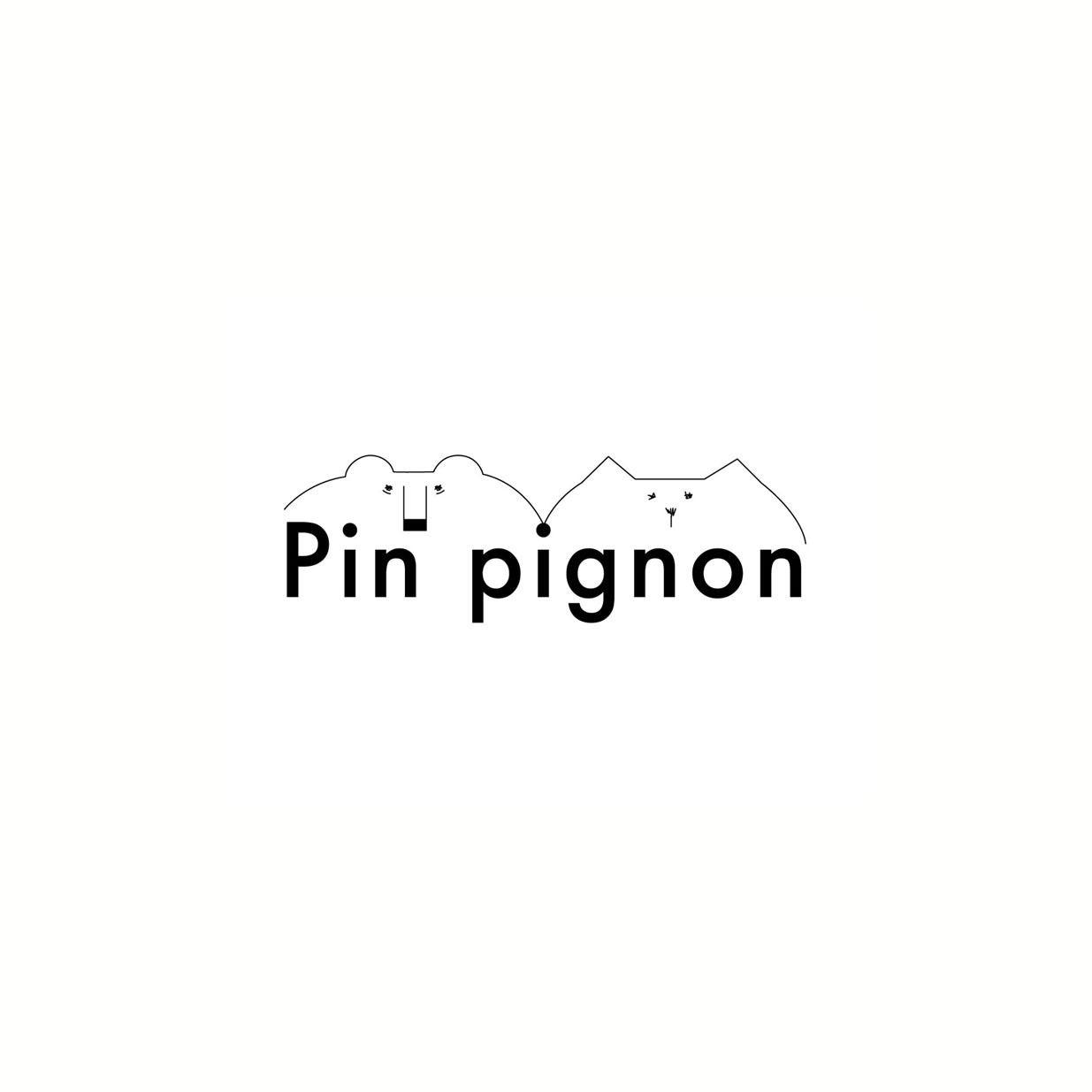 Pin pignon