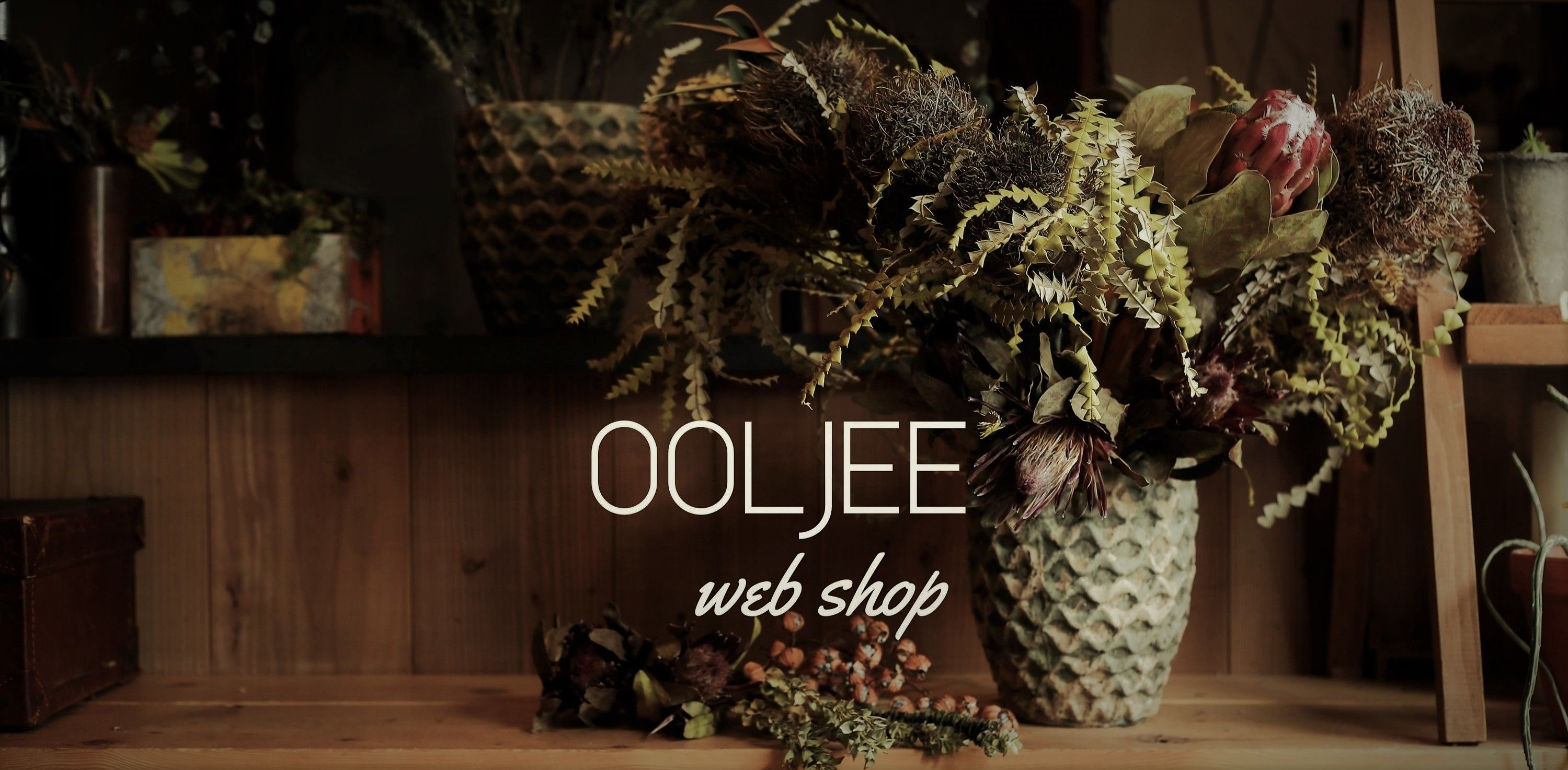 OOLJEE web shop