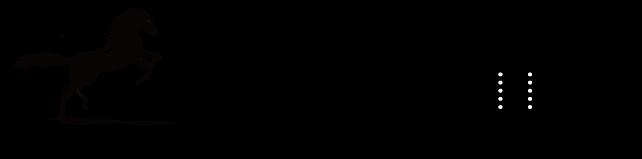 PLATINUMUMA