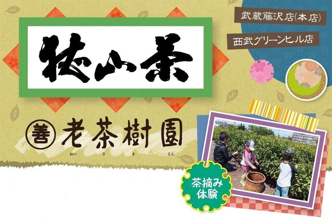 老茶樹園(おいさきえん)