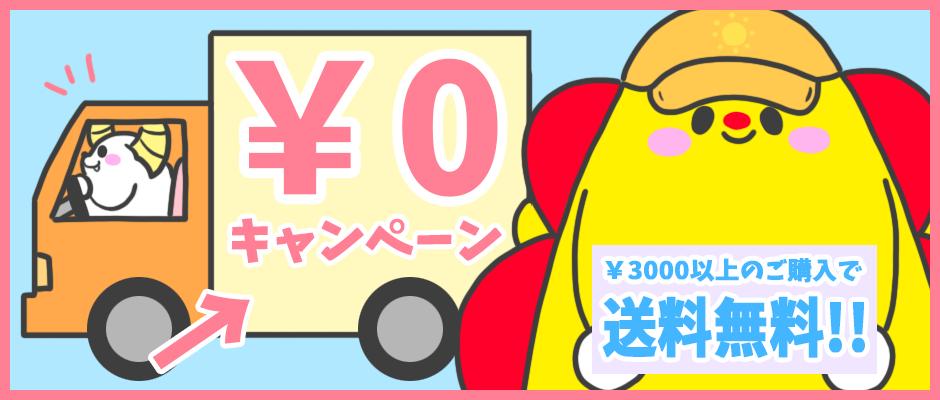 3000円以上送料無料