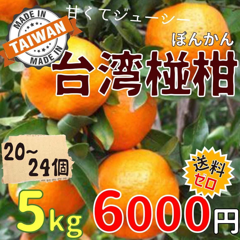 ◆予約販売中◆台湾ぽんかん